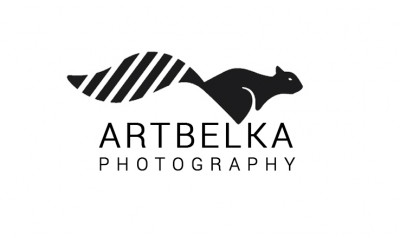 Artbelka Photography - Photographers в Chicago