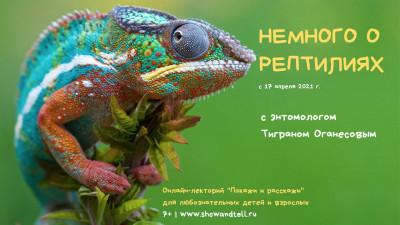 """Онлайн курс """"Немного о рептилиях"""" с Тиграном Оганесовым - Учителя в США"""